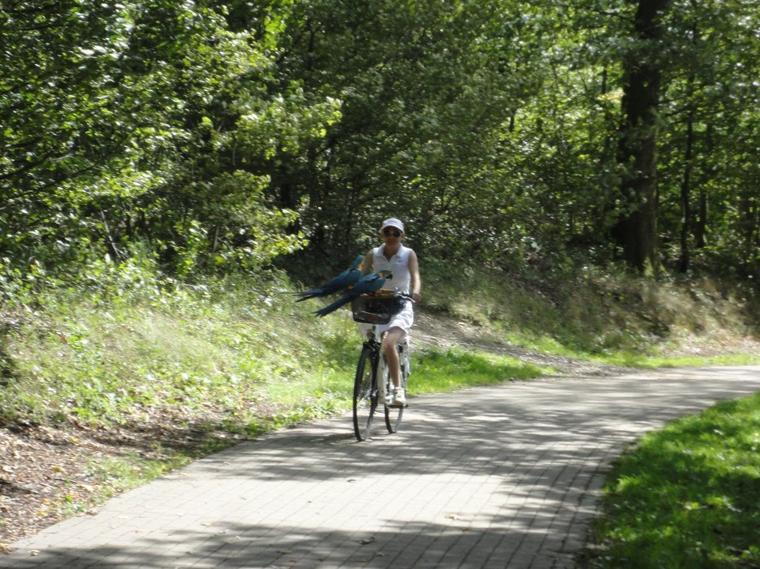 17 km à vélo avec mes zozios 3