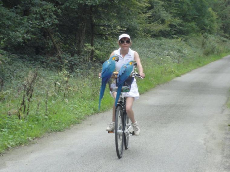 17 km à vélo avec mes zozios 6
