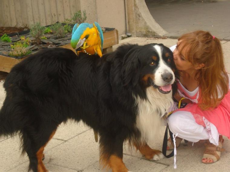 Le beau Levis avec Tom et Shaïna 2