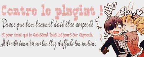 Les Règles/Prévenus/Présentation/Sommaire du blog~!!!! *O*