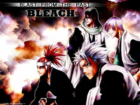 Bleach: shinigami