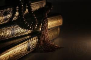 """« A la question toujours posée : """"Pourquoi écrivez-vous ?"""", la réponse du Poète sera toujours la plus brève : """"Pour mieux vivre"""". » [Saint-John Perse]"""