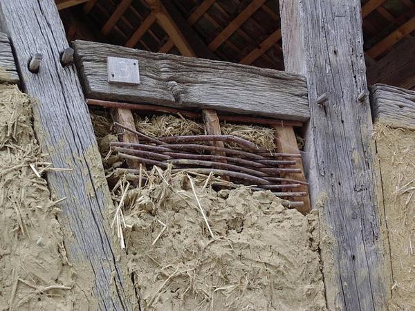 Construction maisons, les colombages