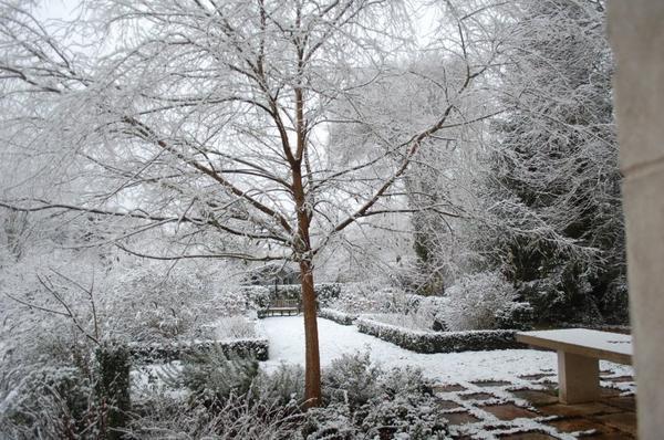 Idées promenades _ _ Arboretum de la Fosse