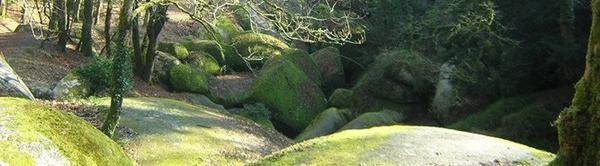 Idées promenades _ _ Huelgoat : la forêt, le chaos rocheux