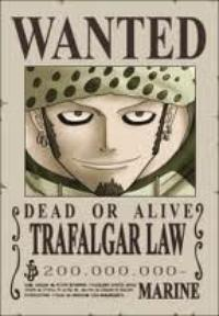 trafalgar law ^^