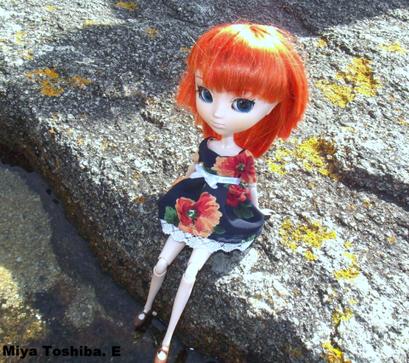 Miya sur un rocher