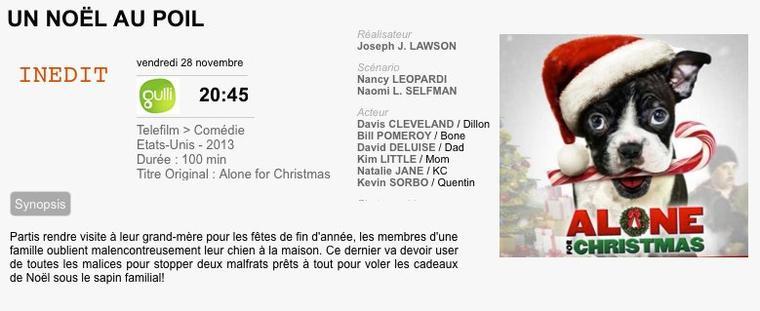 UN NOËL AU POIL /Alone in Christmas 2013