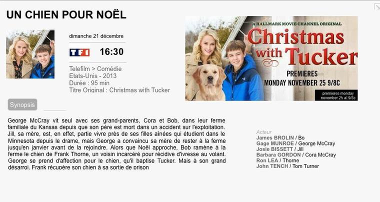 UN CHIEN POUR NOËL( TUCKER ET MOI) / Christmas with Tucker 2013