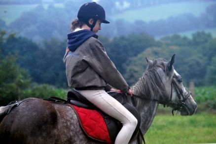 << Le cheval connait à la bride celui qui le mène >>