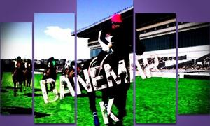 Courses 2013 : Reunion 13 & 14 - Danemark/Turquie