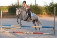On a vu des chevaux et des cavaliers parfaitement d'accord: c'étaient assez souvent des chevaux de bois.