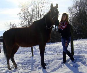 Un cheval bien plus qu'extraordinaire ♥