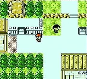 Pokémon générations 2!