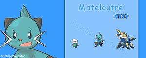 Fiche Manga : Pokemon