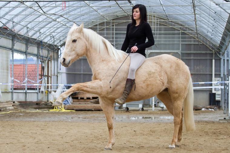 Parce qu'avoir un cheval c'est une responsabilité, c'est un choix et ça demande de l'assumer.