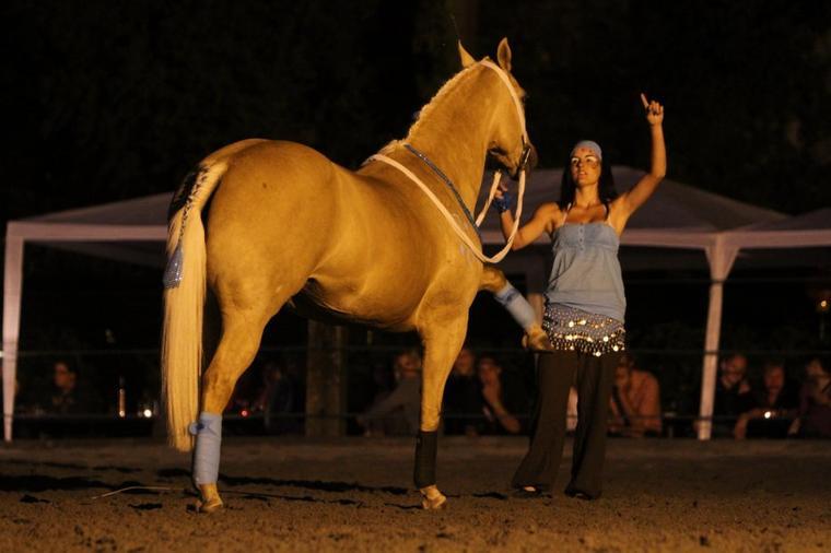 Cabarets équestres - Ecuries d'Arcady - 22 et 23 juin 2012