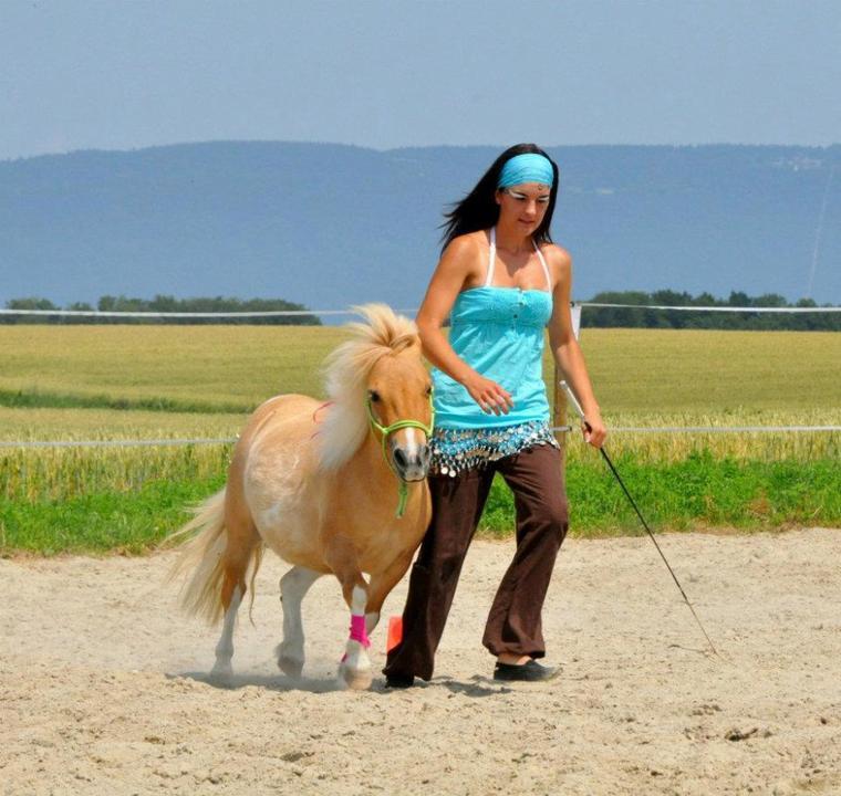 Démo avec Lolypop et spectacle avec Sunny à l'occasion des portes ouvertes de l'écurie HorseGanisation - 30 juin 2012
