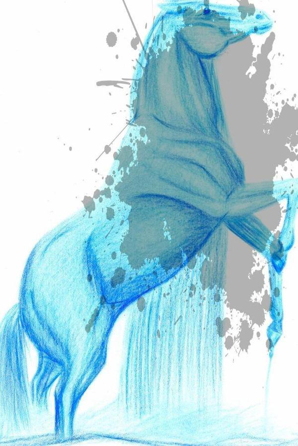 Un cheval d'eau
