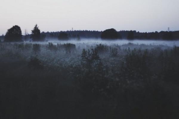 ★ Cesses de t'immiscer dans mes rêver où du moins deviens un cauchemar ★