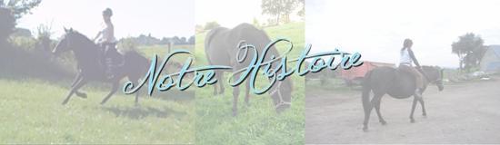 """"""" Pour vivre, les chevaux n'ont pas besoin des hommes. Au contraire, c'est l'homme qui a besoin d'eux ...""""   J-M Lecaille"""
