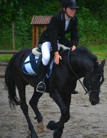 Un poney qui m'a boulverser, et qui m'a tellement donné. ♥