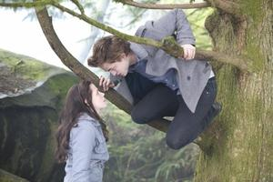 Twilight, Chapitre 1: Fascination