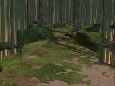 Territoire de la forêt