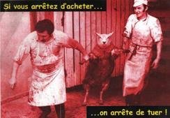 Contre l'abatage des animaux sans étourdissement
