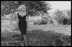 """1960 / Photos Inge MORATH, Marilyn dans une des scènes du film """"The misfits"""". A PROPOS D'INGE MORATH / Elle grandit dans l'Allemagne nazie où deux de ses frères étaient dans la """"Wermarcht"""" (l'armée d'HITLER), ainsi qu'un de ses oncles qui était général. Elle était allée à l'université de Berlin avant de remplir son temps d'obligations militaires en travaillant dans une usine d'avions. Après la guerre et un bref mariage, elle travailla comme journaliste, apprit la photographie et entra dans un cercle international et sophistiqué qui comprenait le designer Cristobal BALENCIAGA, Janet FLANNER du """"New Yorker"""", l'acteur Yul BRYNNER et le renommé photographe Henri CARTIER-BRESSON. C'est avec lui qu'Inge entra à """"l'agence Magnum"""". Après des études de langues et littérature romanes à Berlin et Bucarest, elle eut entre autres activités celle de journaliste radio et de presse écrite avant de se tourner en 1952 vers la photographie, qu'elle apprit à Londres auprès de Simon GUTTMAN, l'un des pères du photojournalisme moderne. Elle fut membre du groupe """"Magnum"""" de Paris et New York depuis 1953. Elle travailla entre autres avec Ernst HAAS et Henri CARTIER-BRESSON, dont elle fut l'assistante de 1953 à 1954. Sa première exposition individuelle eut lieu en 1956, date à laquelle parut également son premier livre « Guerre à la tristesse ». Des voyages professionnels la conduisirent en Europe, en Afrique, en Orient, aux USA et en URSS, en Chine, au Japon, en Thaïlande et au Cambodge. Ses reportages photo parurent dans des revues prestigieuses comme """"Life"""", """"Paris-Match"""", """"Holiday""""  et le """"Saturday Evening Post"""". Elle travaillait pour """"l'agence Magnum"""", et prit des photos du tournage de « The misfits », en 1960. Quelques jours après l'annonce, par les avocats de Marilyn, de son divorce avec Arthur MILLER, Inge MORATH le rencontra par hasard sur la 5th Avenue. Ils tombèrent amoureux. Elle l'épousa le 7 février 1962. Cinq semaines après la mort de Marilyn, le 15 septembre 1962, elle mit a"""