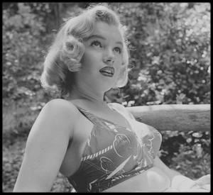 8 Août 1950 / Marilyn étudiant un scénario sous l'oeil du photographe Edward CLARK.
