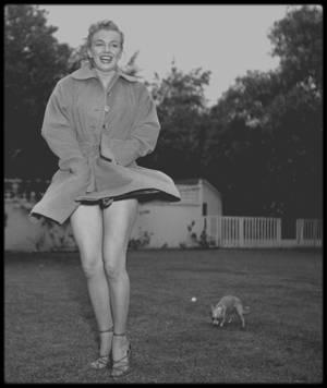1950 / Marilyn et son chihuahua Josefa dans le jardin de Johnny HYDE, alors ami et agent, sous l'oeil du photographe Earl LEAF.