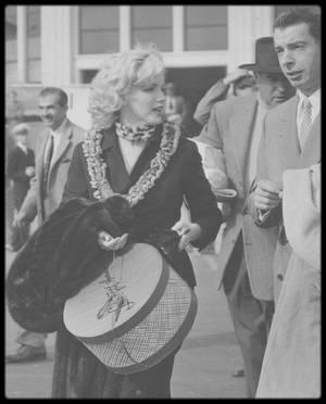 """Janvier 1954 / EN PARTANCE POUR LA COREE / Marilyn et DiMaggio font une escale à Honolulu (à Hawaï). En provenance de Los Angeles, le couple attend l'avion qui les emmènera au Japon. Lorsque l'avion """"Pan American"""" flight 831 se pose sur le sol d'Honolulu, des centaines de fans sont présents, hurlant """"Marilyn! Marilyn !"""". La sécurité n'avait pas prévu ces débordements. C'est une véritable cohue : la foule entoure Marilyn, s'accrochant à ses vêtements et ses cheveux. Certains fans ont même déclaré être parvenu à arracher des mèches de ses cheveux ! Finalement, la police va parvenir à éloigner la foule et à escorter le couple jusqu'à un salon de l'aéroport."""