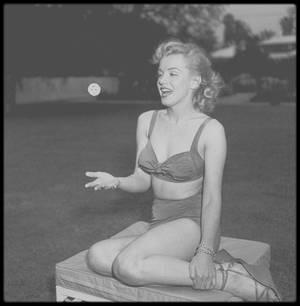 Mai 1950 / Marilyn jouant avec son chihuahua Josefa dans le parc de la maison de son agent Johnny HYDE à Beverly Hills sous l'objectif du photographe Earl LEAF.