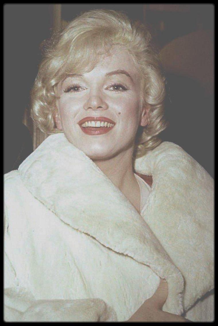 """16 Janvier 1960 / (Part II) Une conférence de presse est organisée par la Fox afin de présenter le film """"Let's make love"""", avec les acteurs principaux et le metteur en scène, ainsi que de nombreux invités."""