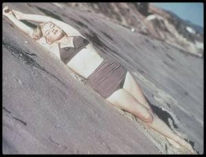 1951 / Marilyn photographiée par Laszlo WILLINGER.
