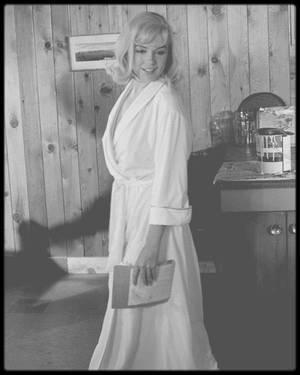 """1960 / Sur le tournage du film """"The misfits""""."""