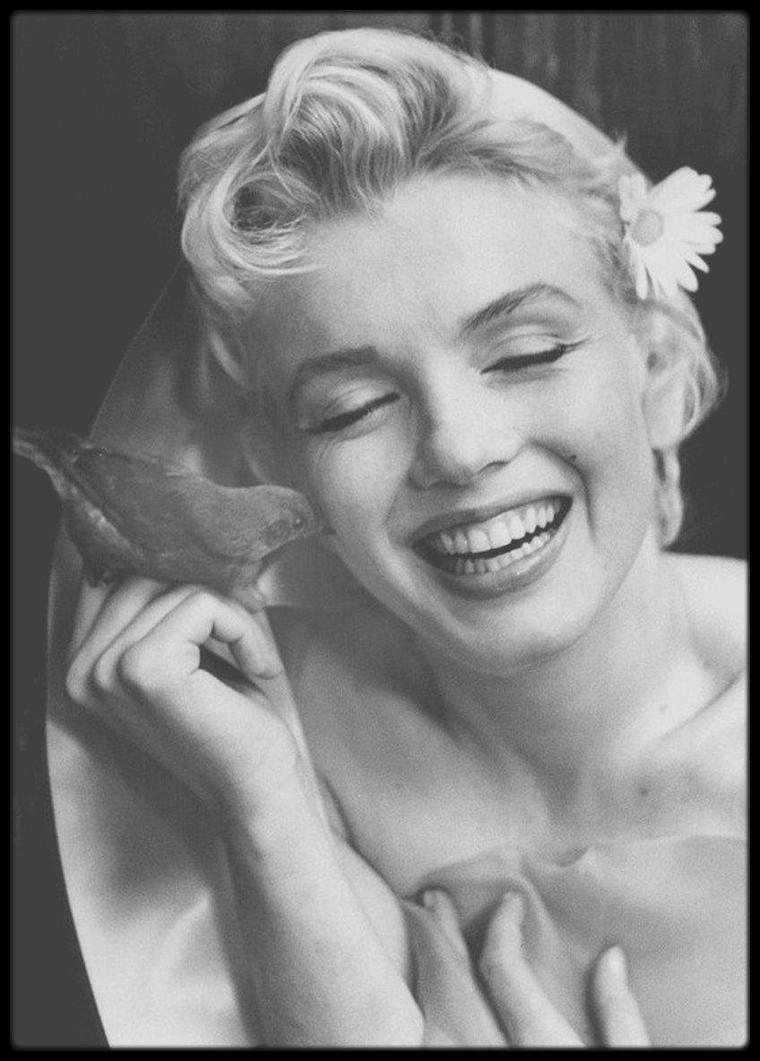 """1956 / Superbe portrait de Marilyn """"à l'oiseau"""" par Cecil BEATON."""