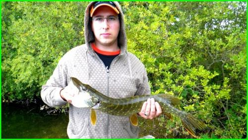 Session pike