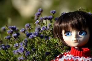Séance photo d'Emiou - Winter is coming héhé ♥