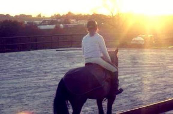 Il n'y a pas de secret aussi intime que ceux d'un cheval et de son cavalier ! ♥