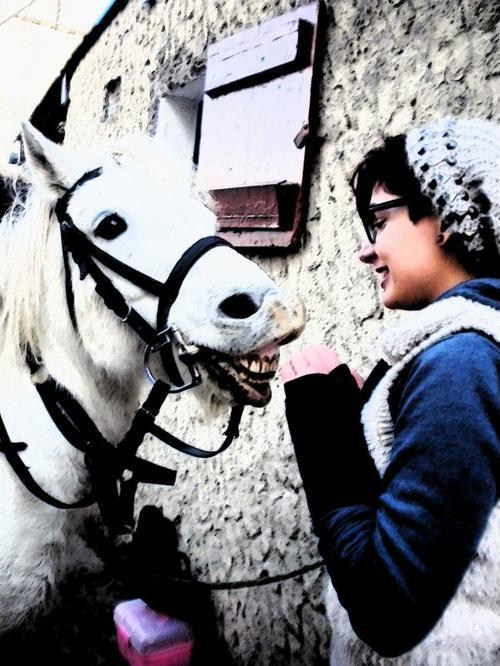 Le plus merveilleux des poneys .. Aramis .