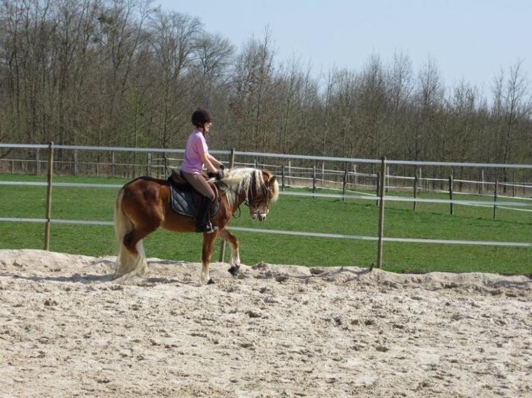 L'équitation, plus qu'une passion .. ♥