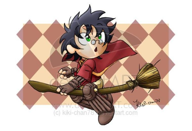 Harry Quidditch