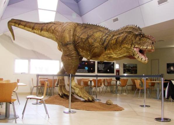 Des Dinosaures (8404)