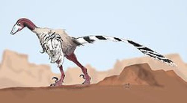 Des Dinosaures     (10480)