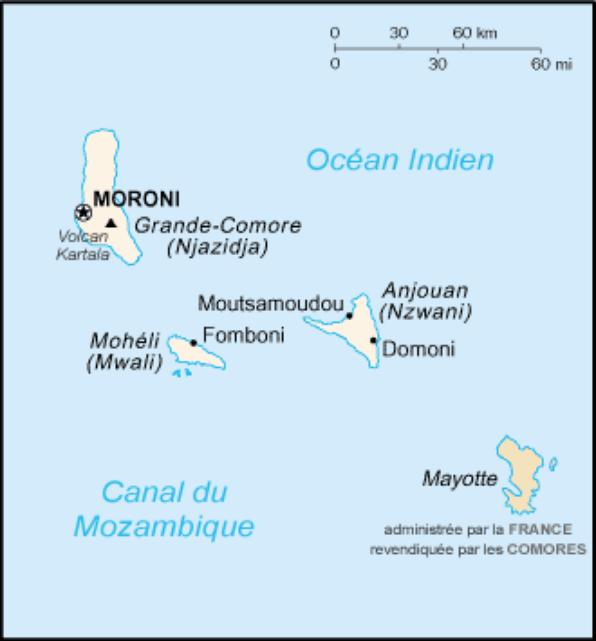 L'Afrique (11780)
