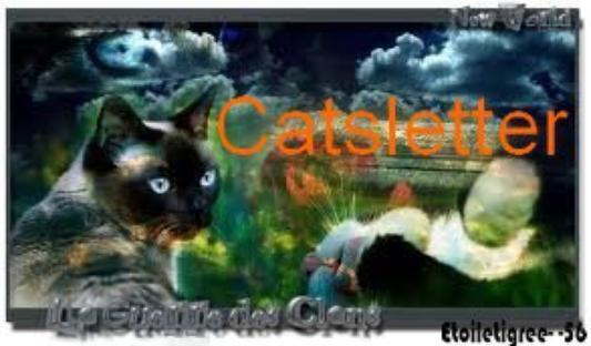 Catsletter