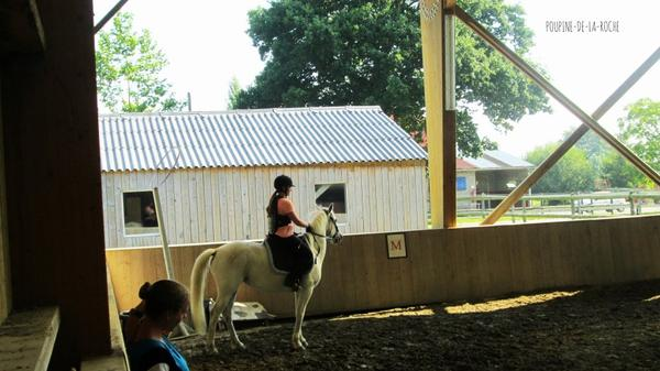 Stage 23,24,25 juillet + passage du Galop 4 ♥
