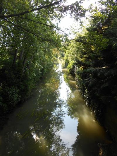 Randonnée du Grand Morin, à Saint-Germain-sur-Morin (1/06/2014)